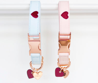 We HEART Rescue Collar & Lead Set
