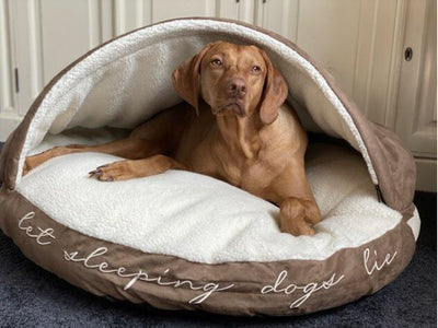 HENLEY & Co Let Sleeping Dogs Lie Comforter Cave Bed
