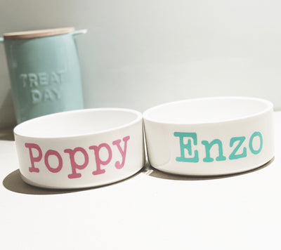 Personalised Ceramic Dog Feeder Bowl
