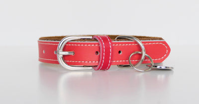 BOSTON LEATHER COLLAR