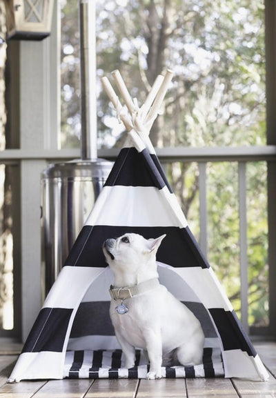 BOLD STRIPE CANVAS TEE PEE
