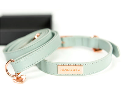 H&Co Signature Leather Collar & Lead Set
