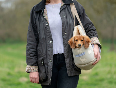 M&H Dog Carriers