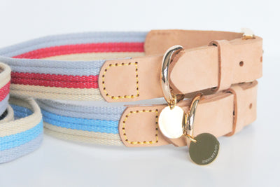 The Byron Collar & Lead