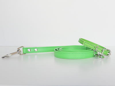 SOFT LEATHER PUPPY COLLAR AND LEAD SET