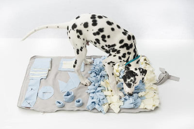 Henley & Co Interactive Snuffle Mat