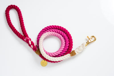 Ombré pink Rope leash
