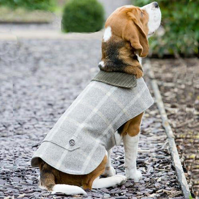 Slate Tweed Dog Coat