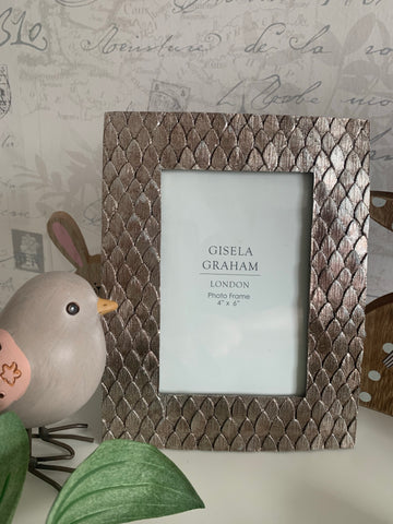 Silver Scales Photo Frame