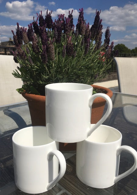 1 Pint Fine Bone China Mug x 3: