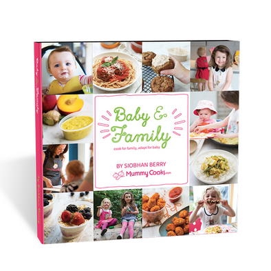 Baby and Family Recipe Book