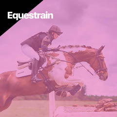 equestrian accessories