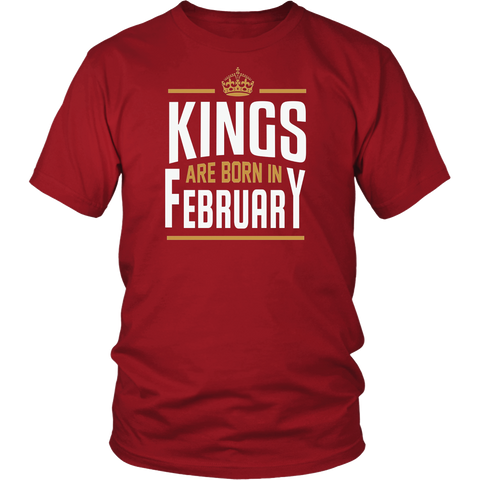 Kings Are Born In February T Shirt Birthday Gift T-Shirt