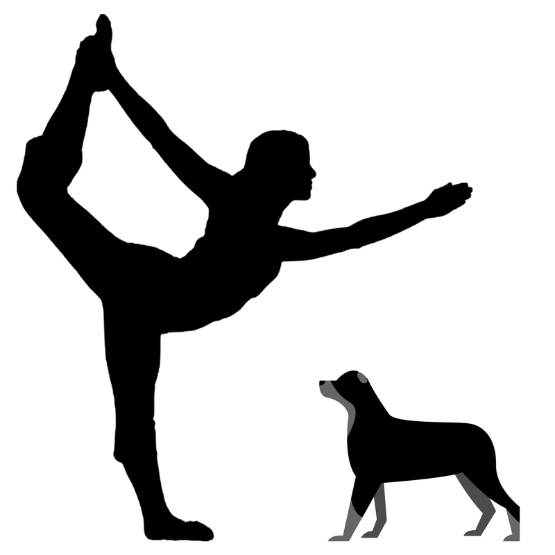 dogs and yoga