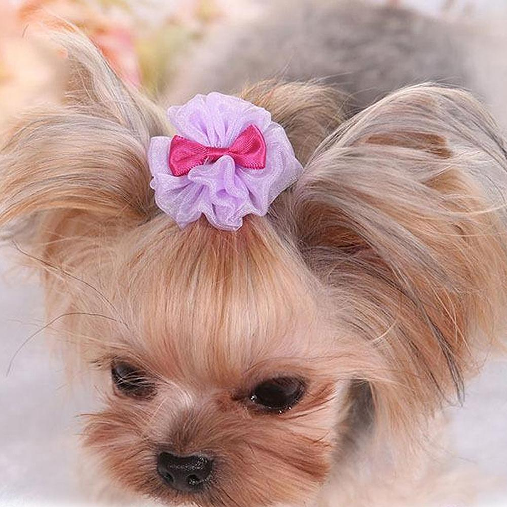 5 PCS Pretty Tulle Pet Dog Yorkie Hair Bows Accessories Shih tzu Hair Clips