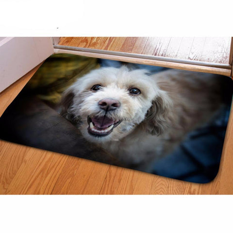 Fully Customizable (Own Picture) Doormat