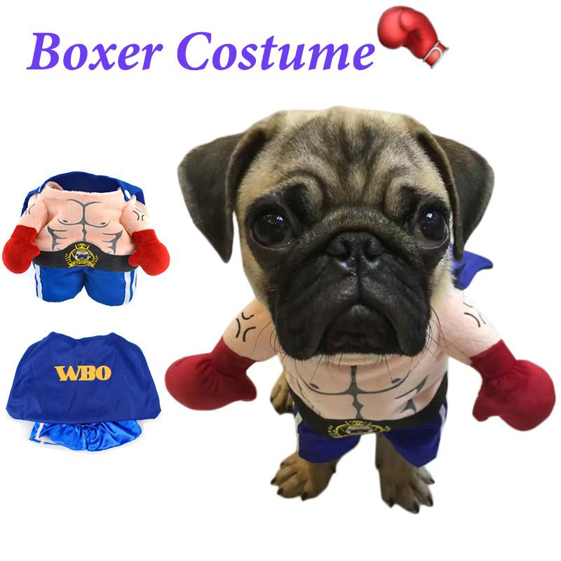 Funny Yorky Boxing Costume