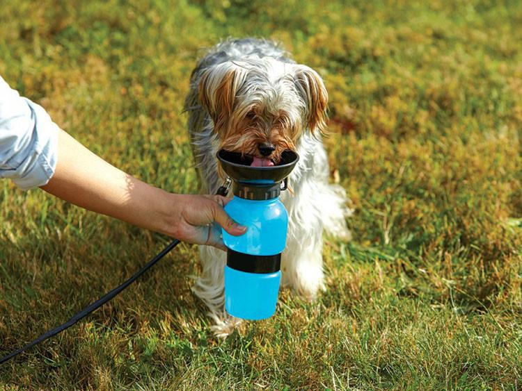 Yorky Outdoor Drinking Bottle
