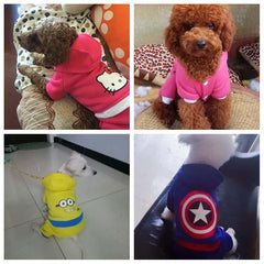 Cute Yorky Superhero Costumes