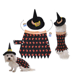 Yorky Witch Halloween Costume