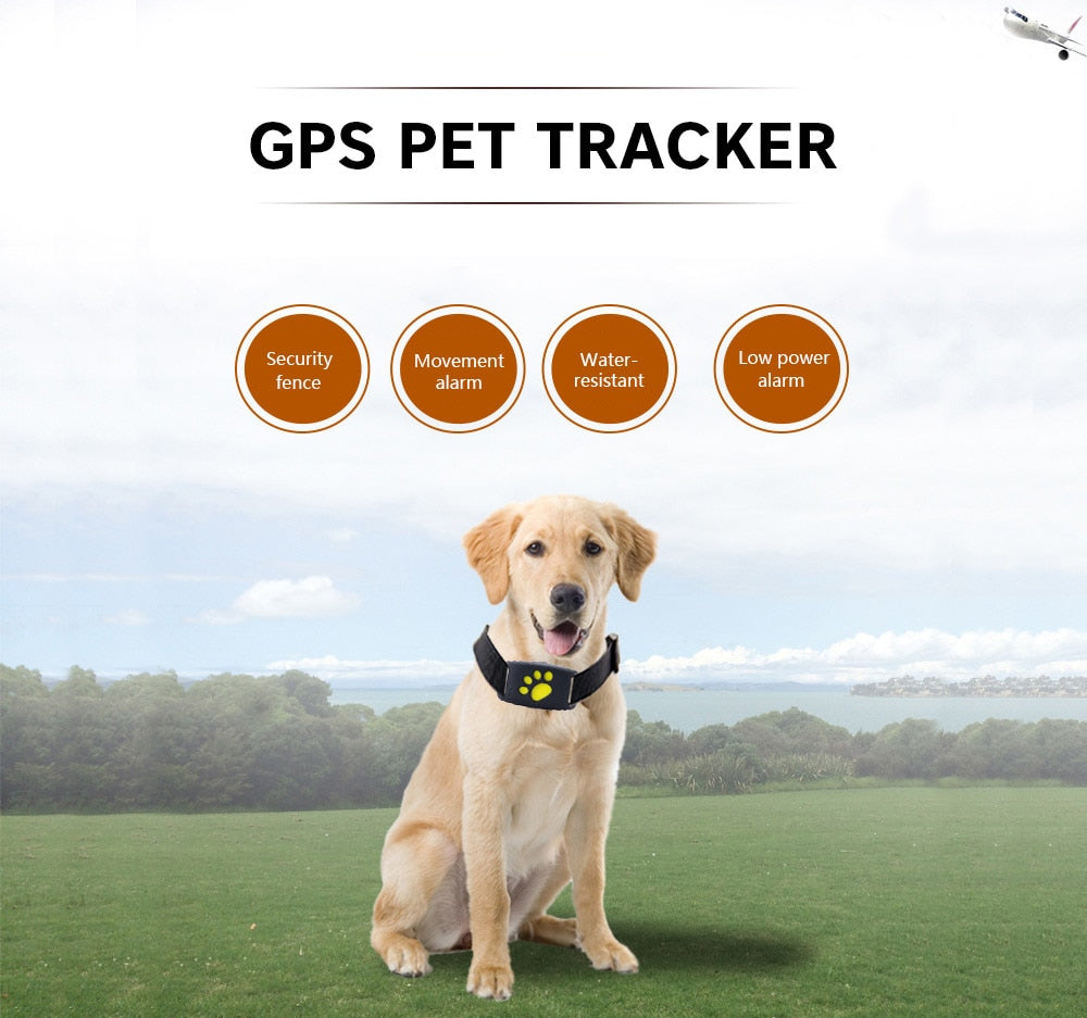 GPS Dog Tracker - Water-Resistant Collar
