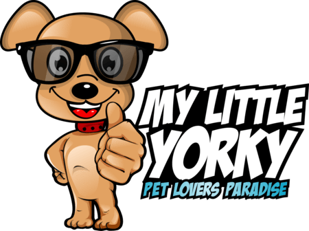 Little Yorky