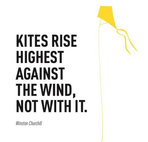 Inspirational Cards Saying Kites Rise Highest Against The Wind, Not With It