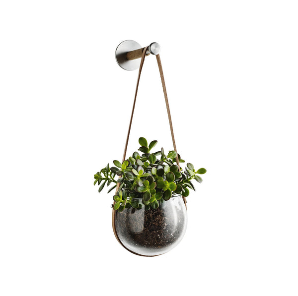 Design with Light Hanging Pot, 5.5""