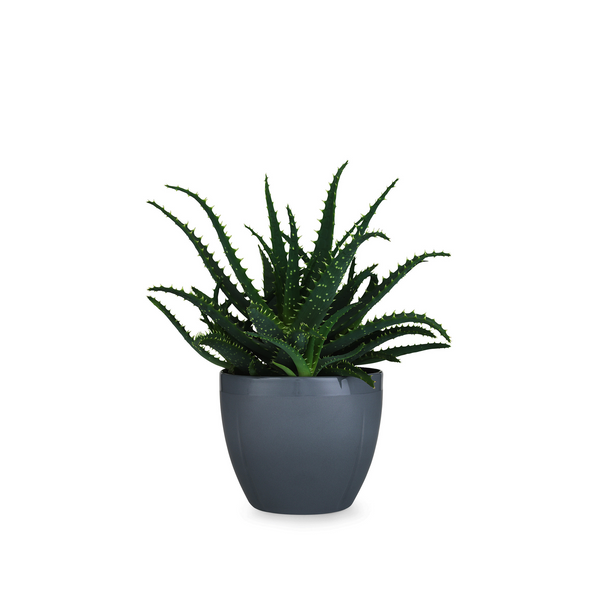 Grand Cru Flower Pot, Grey, 5.5""