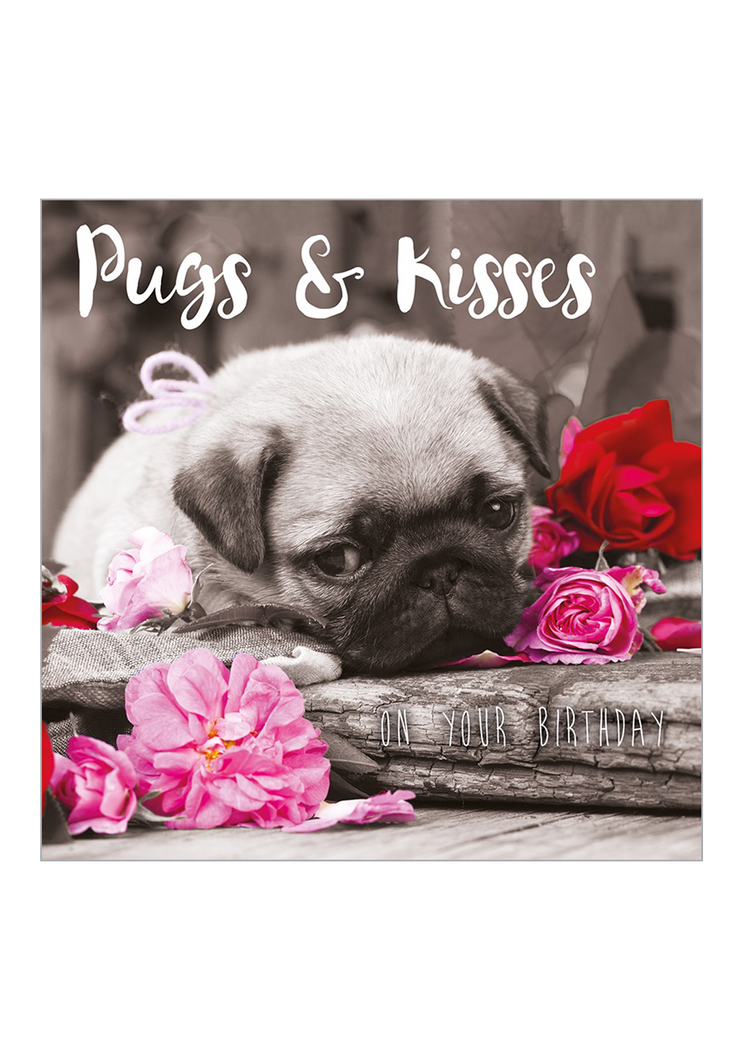Puppy greeting cards image collections greeting card examples dog birthday cards dog vips pugs and kisses birthday card dog vips dog friendly greeting cards kristyandbryce Choice Image