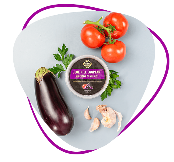 Fresh Med Gourmet Blue Nile Eggplant Dip (250 g) - Local Delivery