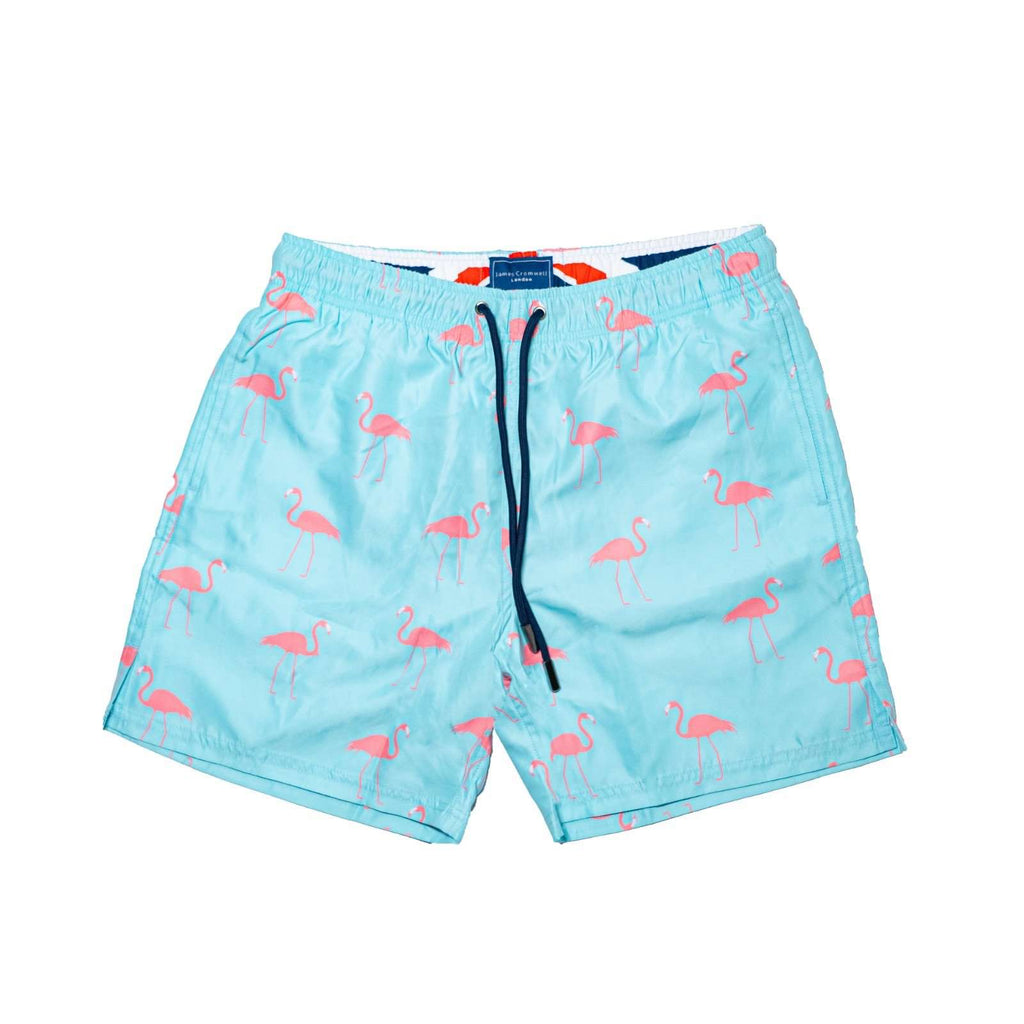 Light Blue Bold Flamingo