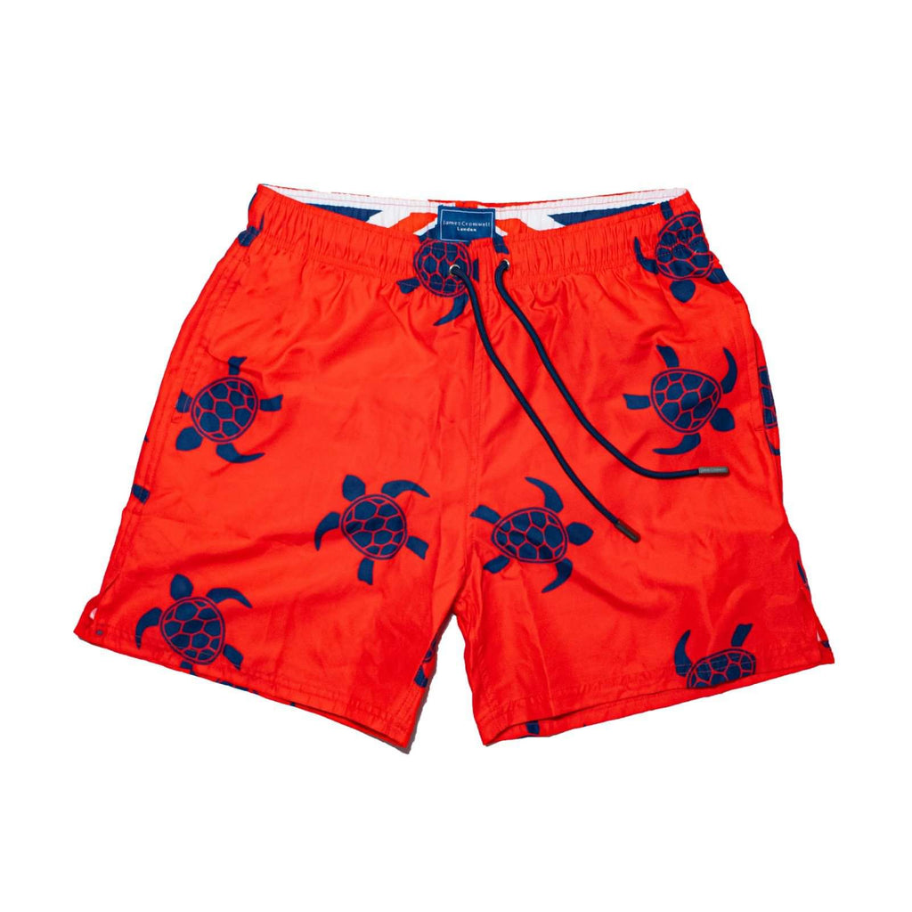 Red Bold Navy Turtle