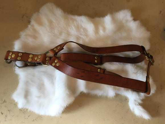 Step-in Leather Dog Harness