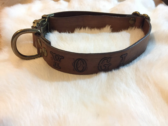 Quick-Release Buckle Dog Collar