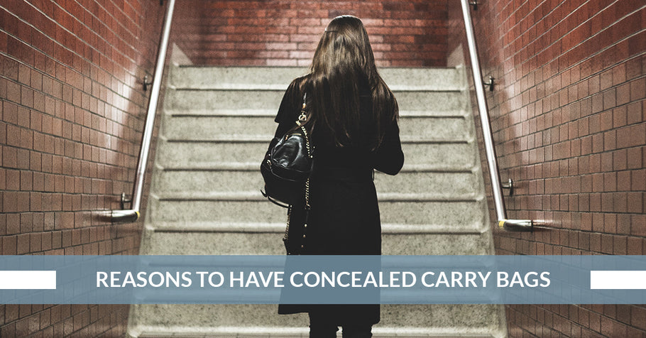 Reasons To Have Concealed Carry Bags