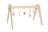 1st Play Baby Gym Combination Pack