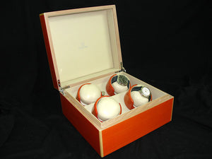 Watch Winder in Sunset Orange - 4 Watches