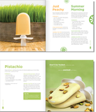 Zoku Quick Pops Recipe Book