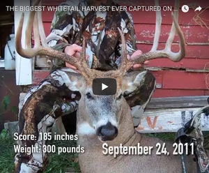 Biggest Whitetail Harvest Caught on Trail Camera
