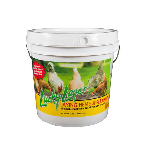 Lucky Layer Supplement 12 LB Bucket