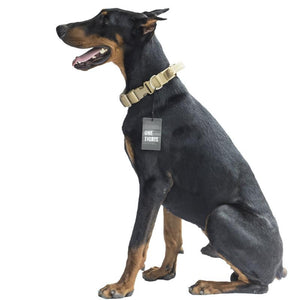 WEEKLY DEAL - Tactical Nylon Military Dog Collar