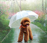 Pet Umbrella - Spoiled Store