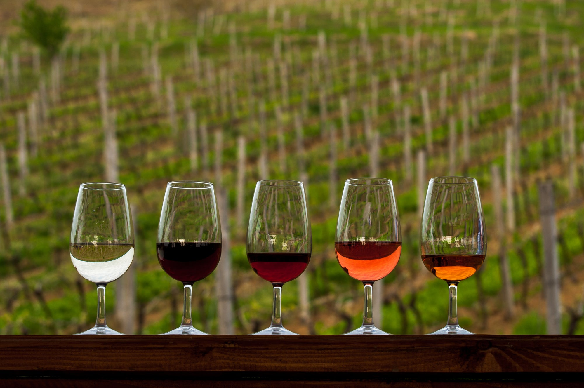 Top 5 Vineyards To Visit This Summer