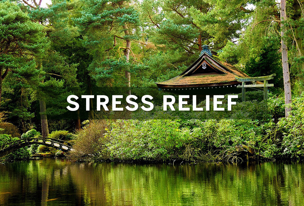 Relieve Job Stress after Work Hours with Natural Stress Relief Products and techniques.