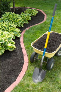 image of flower bed, wheel barrow and mulch
