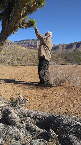 WeatherWool in the Arizona Desert