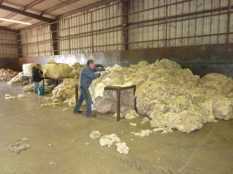 WeatherWool raw fiber is scoured by Bollman Industries in San Angelo, Texas