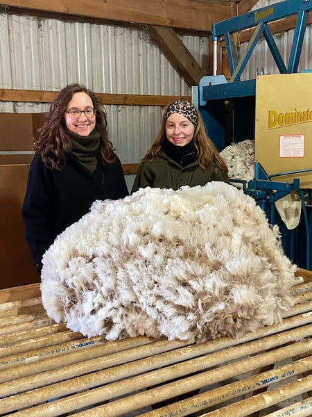 Shearing in March 2020 at PM Ranch, owned by WeatherWool Advisor Bob Padula.  We plan to make WeatherWool garments from this wool before 2021. Helping out are his daughters (who have both raised their own prize-winning sheep!).  The Ladies are wearing WeatherWool Anoraks and Neck Gaiters.
