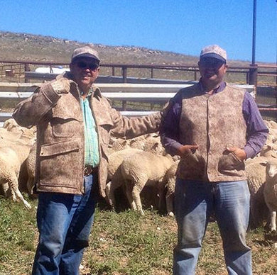 WeatherWool Advisor Mike Corn raises the sheep that grew the wool from which much WeatherWool is made